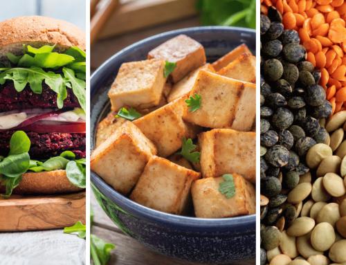 Zamienniki mięsa, czyli gdzie szukać białka na diecie roślinnej?